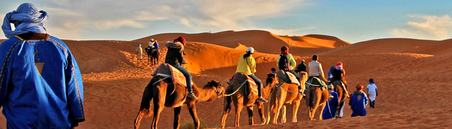 Adventure seekers will enjoy exploring the mighty Sahara