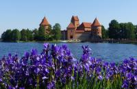 Trakai Castle by Janet Williams
