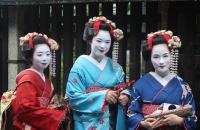 Japanese Geisha girls
